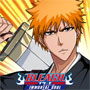Bleach : immortal soul